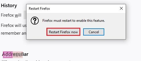 Disable-history-in-firefox-5