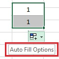 Auto Fill in MS Excel 2016