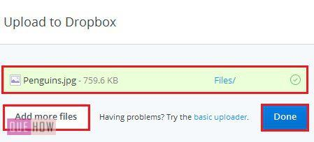 how-to-upload-and-share-a-file-in-dropbox-step-5