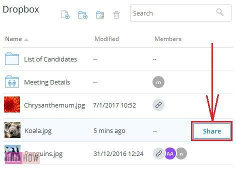 How-to-Share-a-link-in-Dropbox-step-2