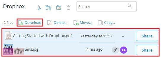 How-to-download-files-from-Dropbox-step-2