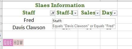 Filter in Excel - 8