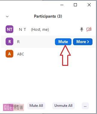 mute-zoom-meeting-6