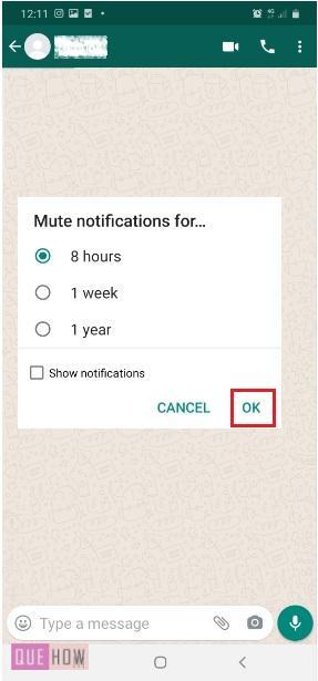 Mute WhatsApp Notification-9