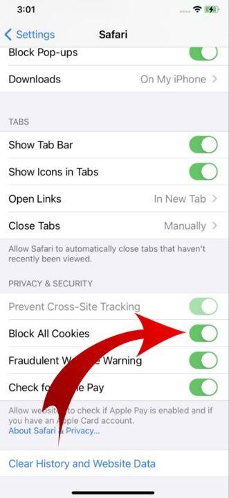 enable cookies on iPhone-03