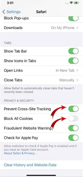 enable cookies on iPhone-04