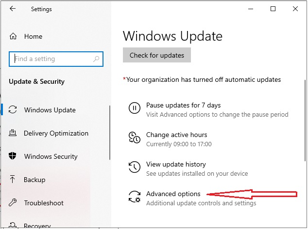 Stop Windows Update 10 - 2